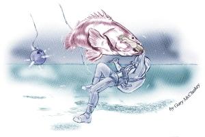 17-Fish